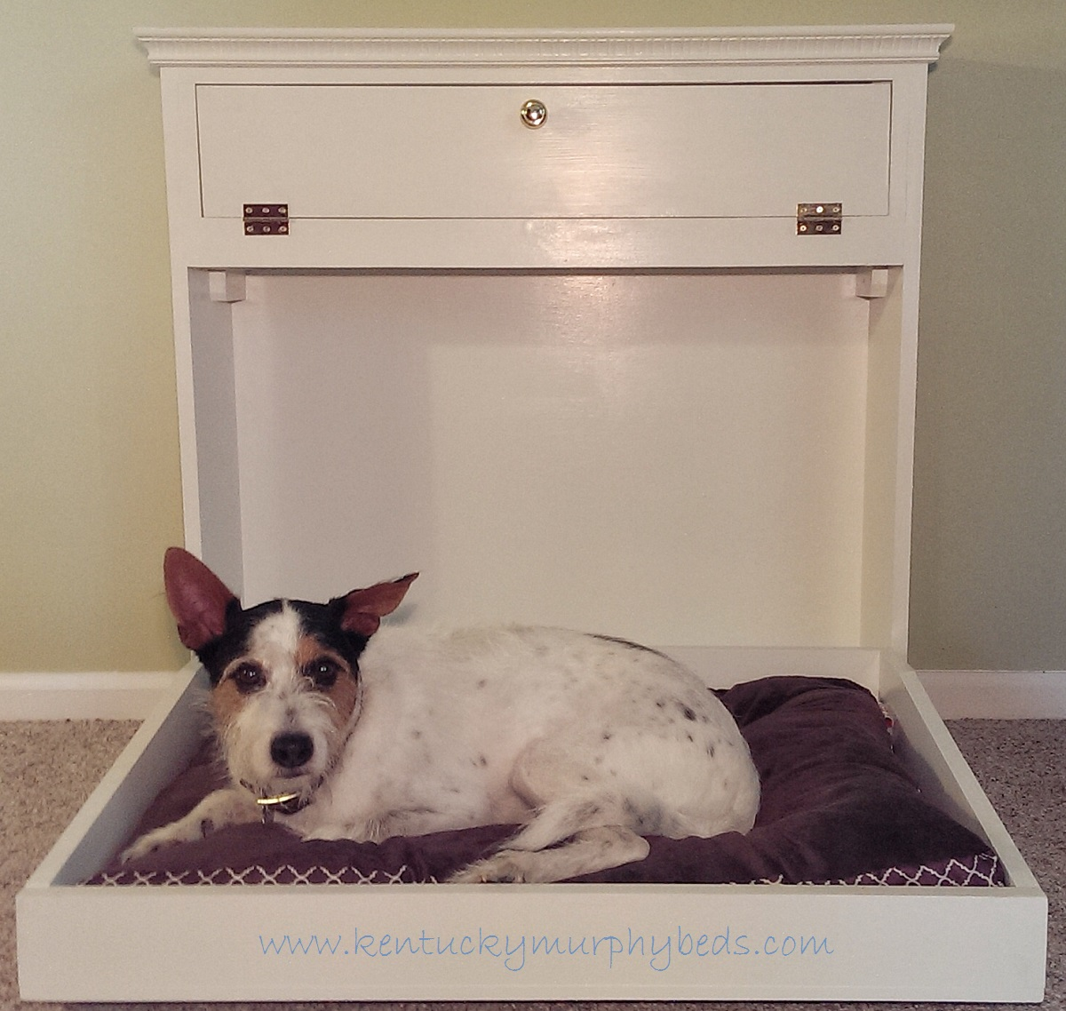 Medium Murphy Dog Bed with White Painted Finish
