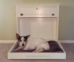 pet Murphy bed, open with dog on cushion