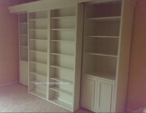 Queen Size Bookcase Murphy Bed closed view, bookcase bed, accessory bookcase cabinets, lexington kentucky