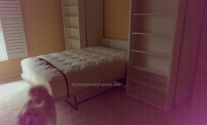 Queen Size Bookcase Murphy Bed open view, bookcase bed, accessory bookcase cabinets, lexington kentucky