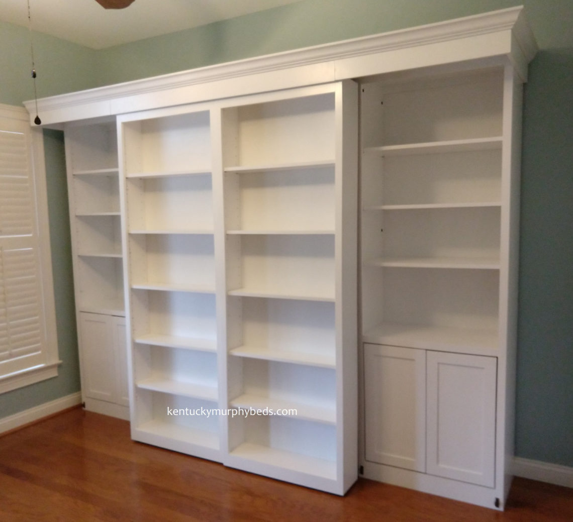 Coolest Murphy Bed With Shelves